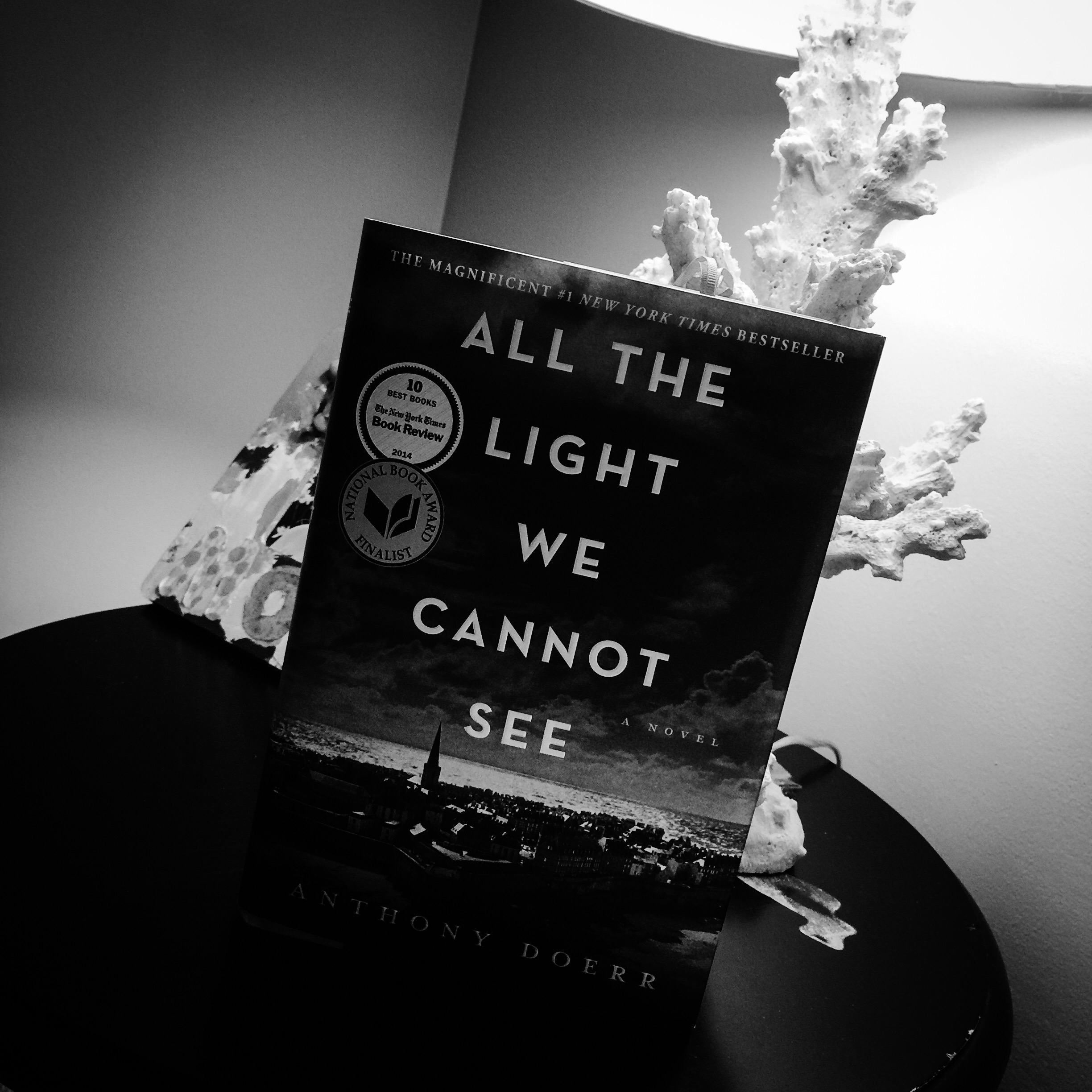 All the Light We Cannot See by Anthony Doerr GOOD READance